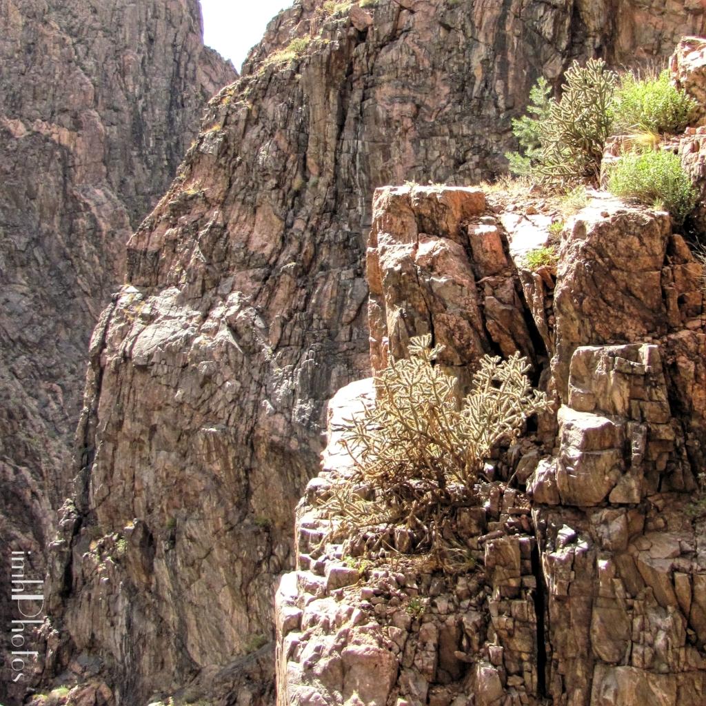 Granite canyon walls